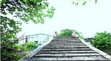 """""""省保""""扬名大桥"""