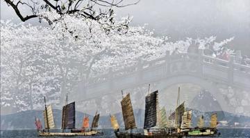 2019无锡国际赏樱周26日开幕