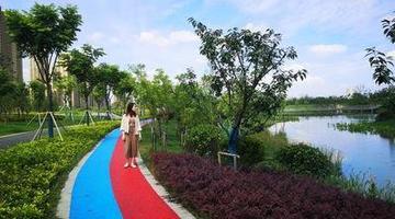 北兴塘河湿地公园开放