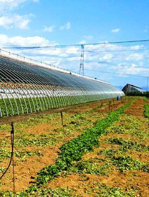 无锡45个农业农村重大项目开工