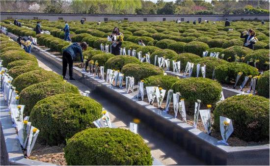 图为志愿者们在给每个墓穴敬献鲜花