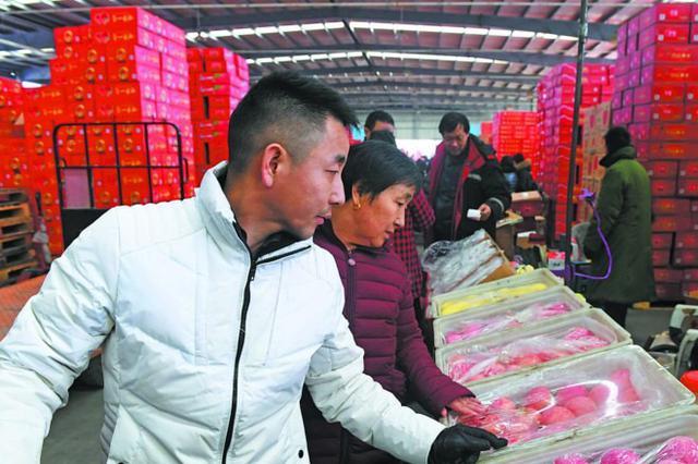 肉墩头、菜篮子、果盘子、渔码头 货足价稳迎春节