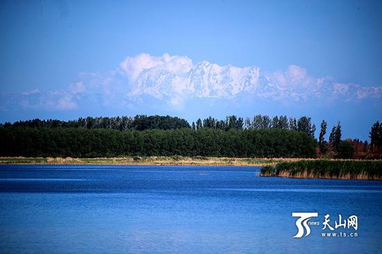 6月18日,呼图壁大海子湿地,湿地远处是博格达峰。