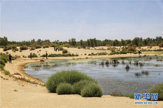 """新疆是个好地方 """"大漠湖杨""""生态景区助推和田地区旅游产业高质量发展"""