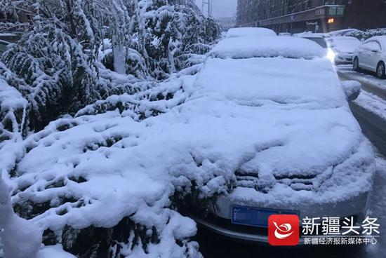 """新疆头条讯 (首席记者 张万德 摄影报道 )一场雨转雨夹雪转雪,让乌鲁木齐一夜入""""冬""""。枝头,屋顶,都是一夜降雪所留下来的今秋初雪礼物。虽然还未达到气象意义上的入冬,但是体感可是扎扎实实地感受到了寒冷,已经到了能呵出白气的程度。"""