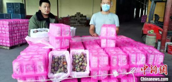 工作人员将存储在冷库的西梅装车。台州援疆指挥部供图