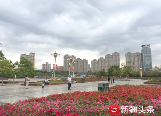 南湖市民广场上色彩鲜艳的花不时吸引市民驻足观看