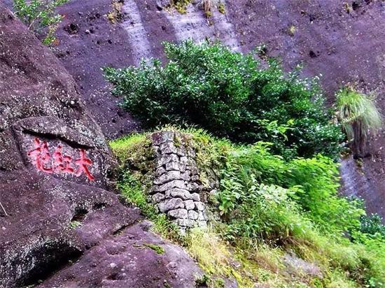 武夷山顶级岩茶,有喝过第一种的都不是普通人