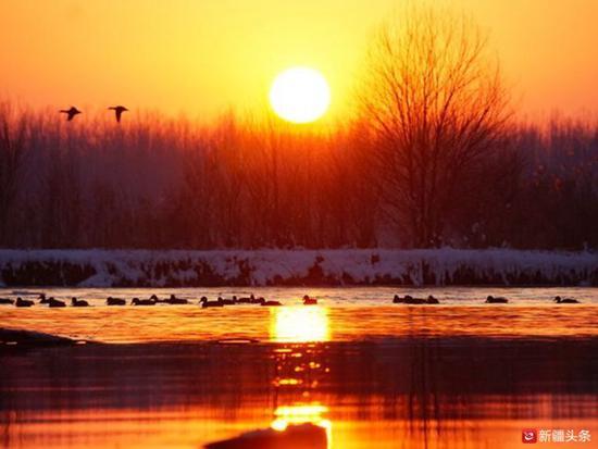 2019年1月,夕阳下的伊犁河,绚丽的夕阳余晖为它蒙上一层温柔的纱。(孙乐 供图)