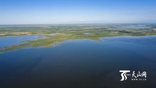 6月18日,呼图壁大海子湿地,无人机拍摄的大海子俯瞰图。