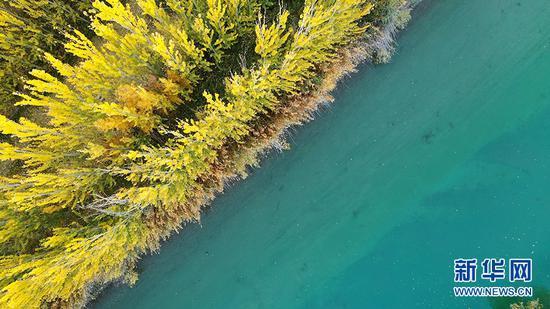 10月21日,航拍新疆博湖县开都河畔秋景。新华网发 年磊摄