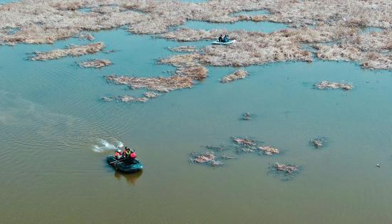 2020年4月3日,湿地管护人员与村民一起乘坐小船在新疆昌吉州呼图壁县五工台镇百泉湖湿地中观察水鸟。(陶维明 摄)