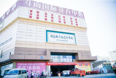 斗南花卉市场是云南省最大的花卉交易市场,进入这里,仿佛进入的花的海洋。