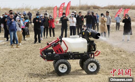 """新疆两名""""90后""""挑战管理3000亩棉田 亩产要达300公斤以上"""