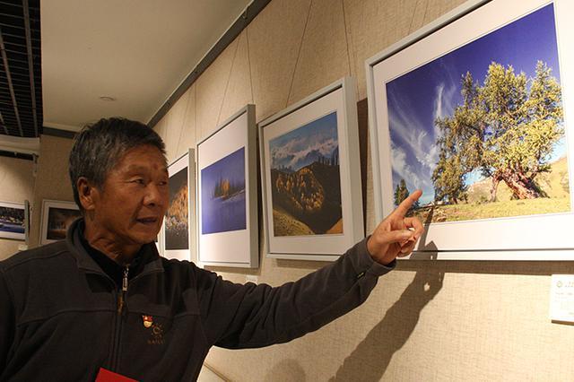 新疆乌鲁木齐举办天然林保护工程20年摄影展