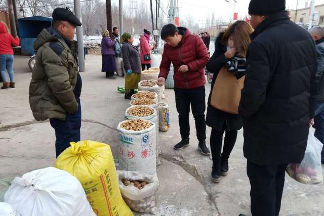 喀什市:园艺村首届农产品展销会开始啦!