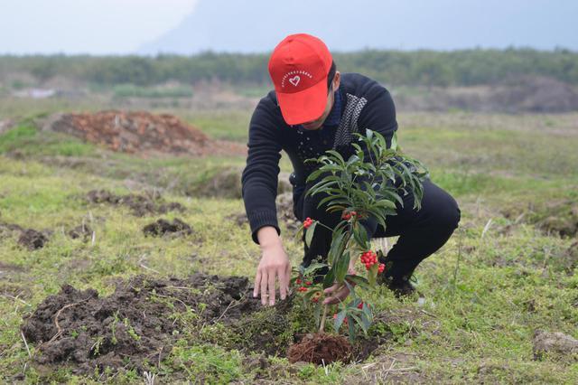 全社会增绿、爱绿、护绿风尚日益浓厚