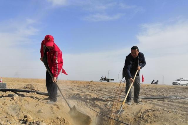 """在荒滩上种植2000亩果园 焉耆县打造""""城市后花园"""""""