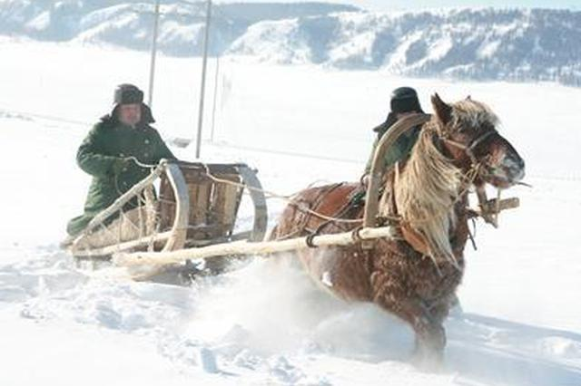 """""""雪橇供电所""""节前添装备 马拉雪橇升级雪地摩托车"""