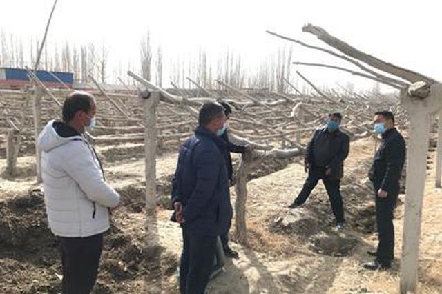 自治区团委驻村工作队与村民开展春季生产