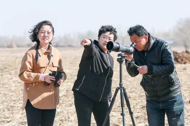 新疆呼图壁:守护候鸟