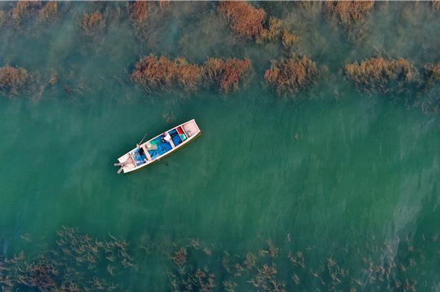 新疆博斯腾湖迎来开湖季