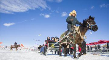 新疆赛里木湖:多彩冰雪季 冬日欢乐多