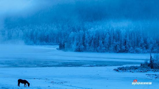 冬日喀纳斯1