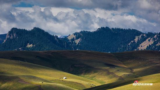 天山牧场1