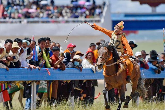 西藏那曲:骏马驰骋赛马场