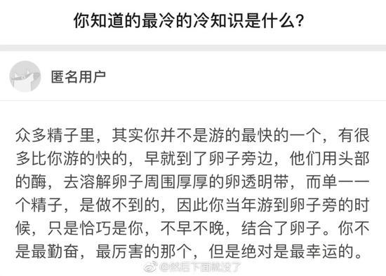 囧哥午间版:招聘一个追星的 摄影文案美工翻译全有了图片