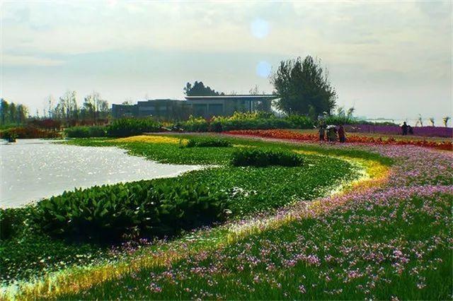 昆明官渡区17.6公里湖滨生态廊道月底建成