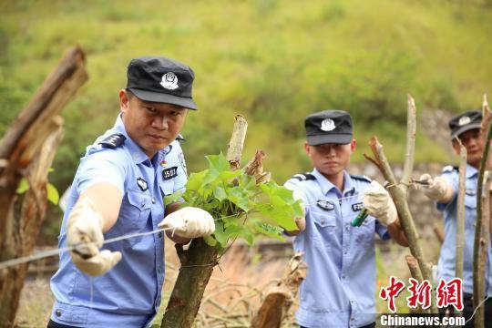 杨绍院(左一)带领民警、巡防队员在铁路边修筑羊群防护网。 周银 摄