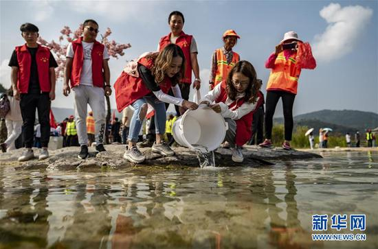 8月26日,志愿者们在抚仙湖边投放鱼苗。