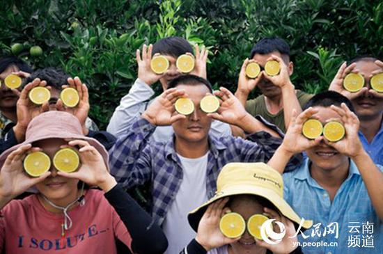 """褚橙基地工作人员手持""""云冠橙""""合影。阿良 摄"""
