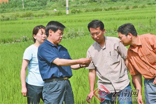 朱有勇在田间讲解作物病虫害防治。供图