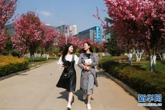 鲜花绽放春满校园。刘思奇(左)刘婷婷(右)。新华网 马一文 摄