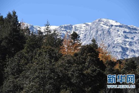 初冬的云南省丽江玉龙雪山景色秀美(11月10日摄)。新华社记者杨宗友摄