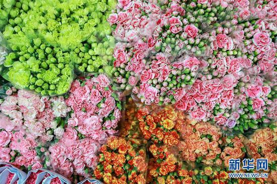这是2月10日拍摄的泰国曼谷锦泰花卉冷库中的云南鲜花。 新华社记者 张可任 摄