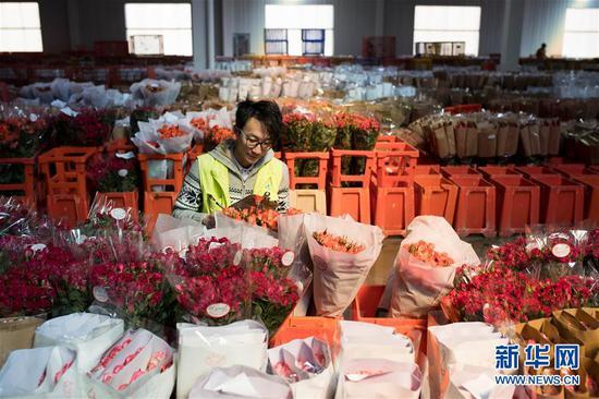 2月12日,在中国云南昆明斗南国际花卉拍卖交易中心,一名质检员对鲜花进行质量检验及等级评定。 新华社记者 江文耀 摄
