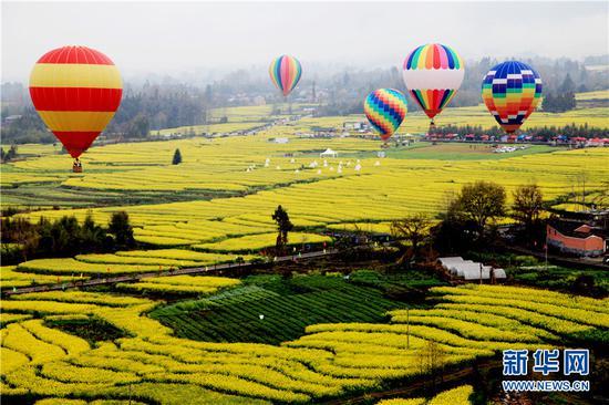 万亩油菜花上空热气球翱翔。新华网发(李黎 摄)
