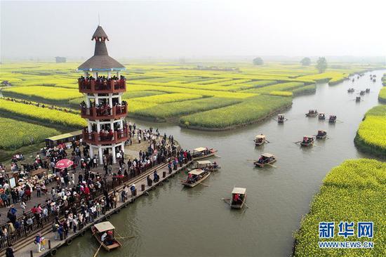 4月7日,游客在江苏兴化千垛景区游览(无人机拍摄)。新华社发(颜怀峰 摄)