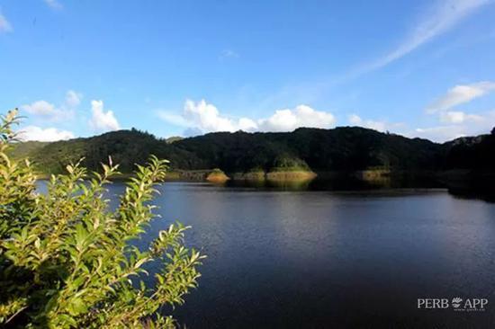 杜鹃湖 (周梓楠/摄)