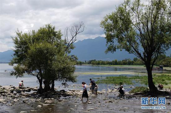 8月10日,游客在大理市湾桥镇古生村的洱海边游览。
