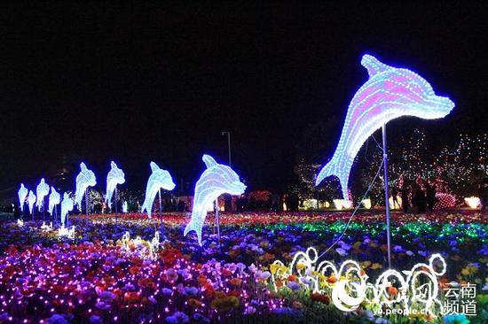 昆明世博园夜景。人民网 虎遵会 摄
