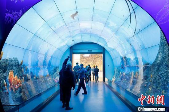 图为民众通过LED屏观看海洋生态。 李嘉娴 摄
