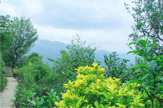 临沧11地创建为云南省旅游扶贫示范县、乡、村 占全省创建认定总数的十分之一