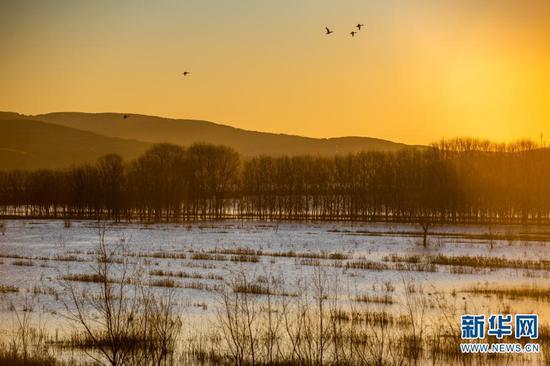 11月19日拍摄的念湖一景。