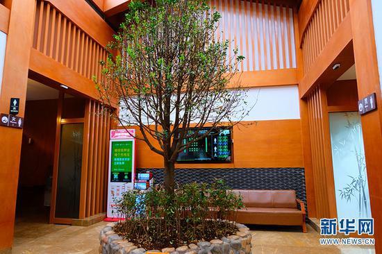 丽江蓝月谷旅游厕所内景。新华网发(云南省文化和旅游厅 供图)