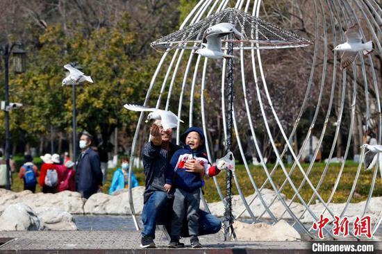 2月16日,游客在云南昆明与红嘴鸥互动。 李嘉娴 摄